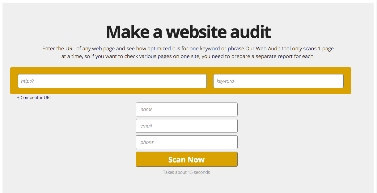 make a free website audit